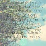 Yoga voeding, 8 tips voor een gezonde levensstijl!