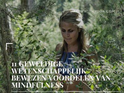 wetenschappelijk bewezen voordelen van Mindfulness