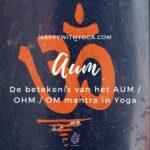 De betekenis van het AUM / OHM / OM mantra in Yoga