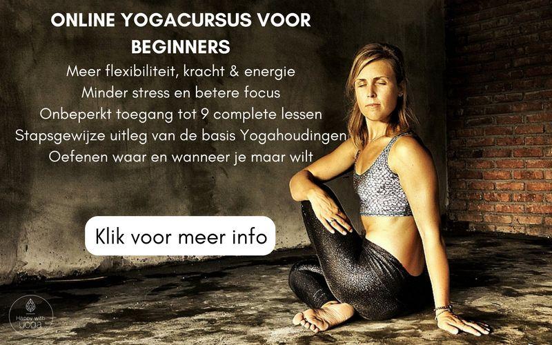 Beginner Yoga online cursus