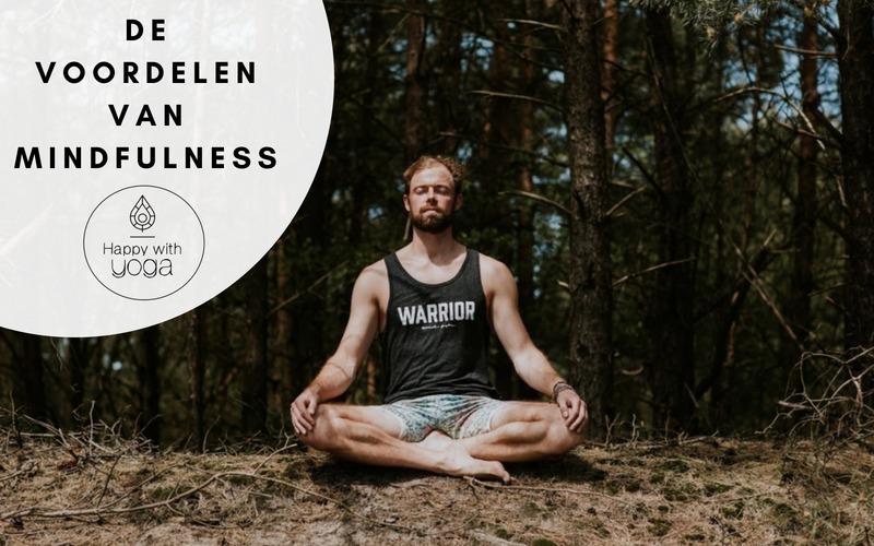Nut van Mindfulness