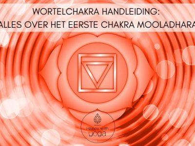 Wortelchakra-handleiding-–-Alles-over-het-eerste-chakra-Mooladhara