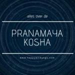 Pranamaya kosha handleiding – Alles over de tweede kosha