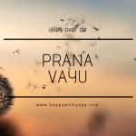Prana Vayu handleiding – een compleet overzicht