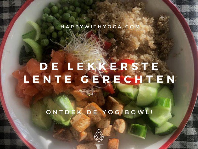 yogi bowl