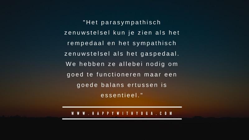 Sympathisch zenuwstelsel quote